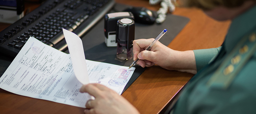 Нужна помощь в оформлении документов?